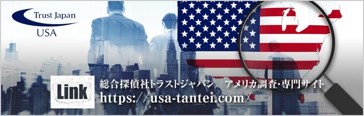 アメリカ調査