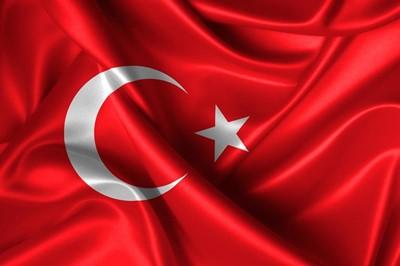 トルコ調査