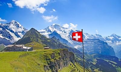 スイス調査